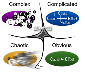 Cynefin Cause & Effect